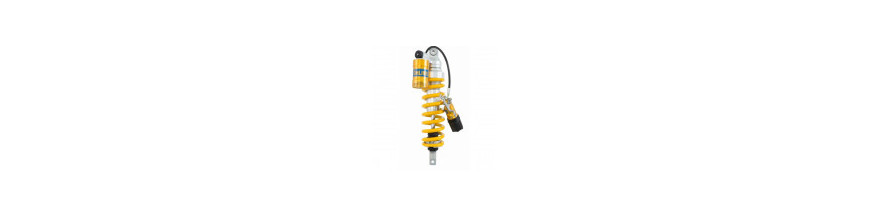 Suspensiones  R 850/1100/1150 GS/ADV